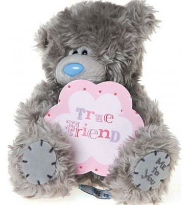 True Friend Me to You Bear 7 inch