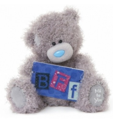BFF Me to You Teddy.