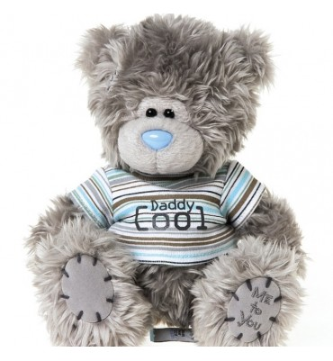 Cool Daddy Me to You Bear 7 inches.