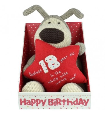 Boofle Boxes 18th Birthday Plush.