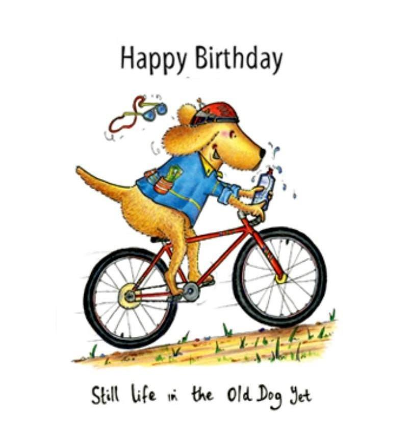 Still Life In The Old Dog Yet Birthday card.
