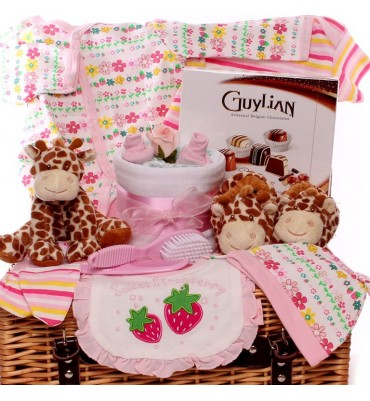 Sweet Strawberry Baby Girl Hamper.
