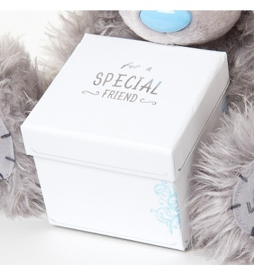 For A Special Friend Me to You Teddy Gift.