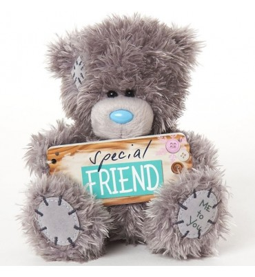 Special Friends 5 inch Me To You Bear.