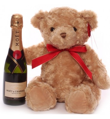 Teddy And Champagne.