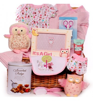 Wise Owl Baby Girl Hamper.